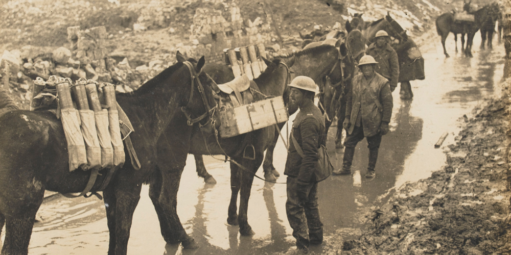 Pack mules carrying Artillery